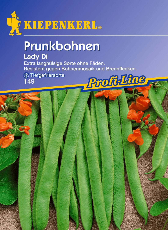 Kiepenkerl Prunkbohnen Lady Di