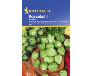 Kiepenkerl Rosenkohl Roodnerf