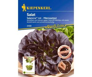 Kiepenkerl Salat Salanova rot