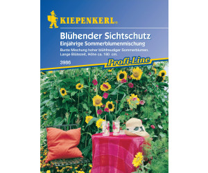 Kiepenkerl Blühender Sichtschutz