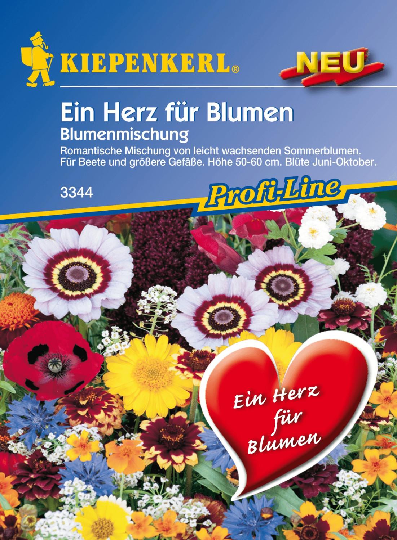 Rabatt-Preisvergleich.de - Heim & Garten > Pflanzen > Blumen|Heim ...