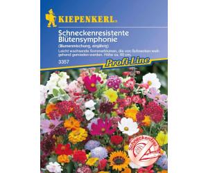 Kiepenkerl Schneckenresistente Blütensymphonie