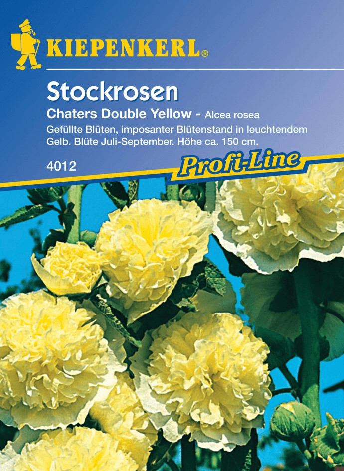 Kiepenkerl Stockrosen ´´Chaters Double Yellow´´