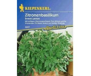 "Kiepenkerl Zitronenbasilikum ""Sweet Lemon"""