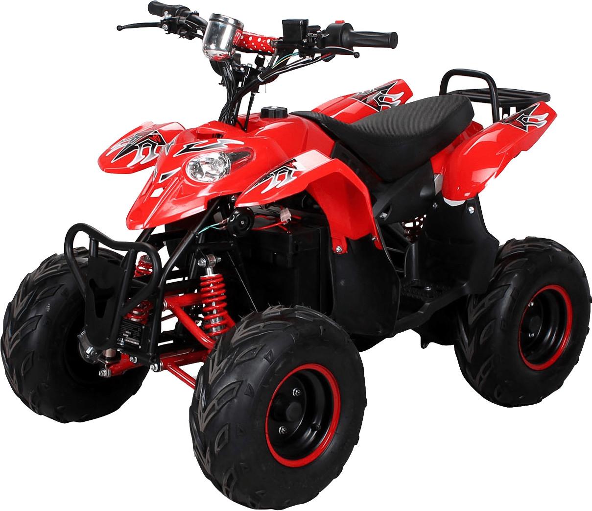Actionbikes Quad S-5 Polari 1000 W rot