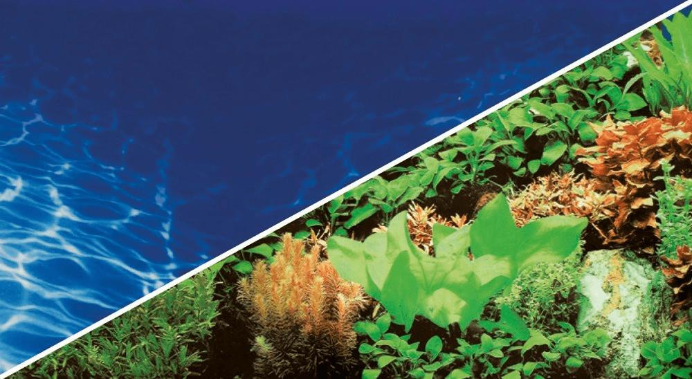 Hobby Fotorückwandzuschnitt Pflanzen 8 marin bl...