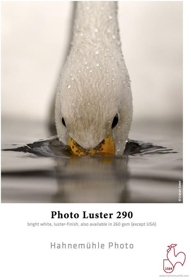 #Hahnemühle Photo Luster 290g/qm 24#