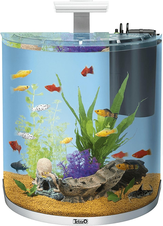 rabatt aquaristik aquarium nano aquarium. Black Bedroom Furniture Sets. Home Design Ideas