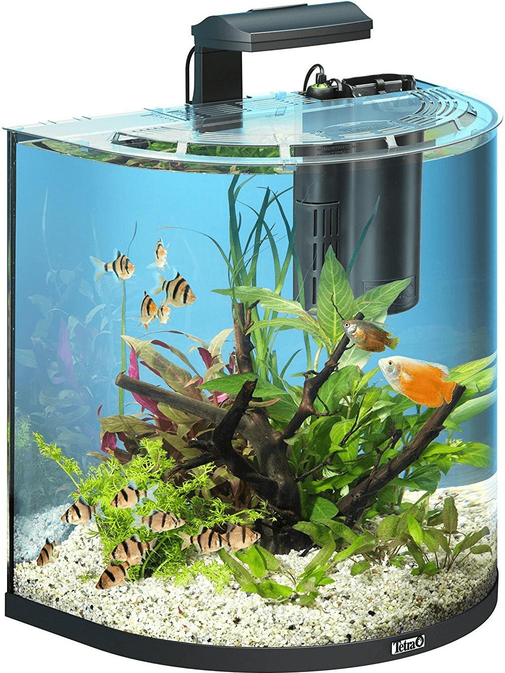 rabatt tetra aquaart explorer line aquarium set 60l anthrazit. Black Bedroom Furniture Sets. Home Design Ideas