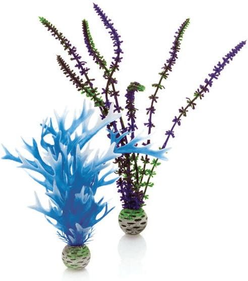 biOrb Pflanzen Set mittel blau & lila (46059)