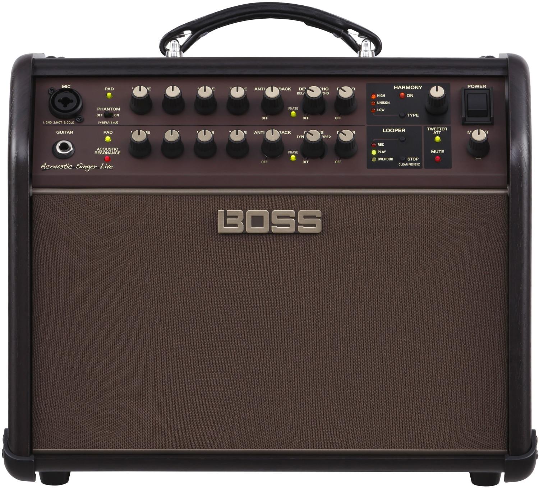 Image of Boss Acoustic Singer Live