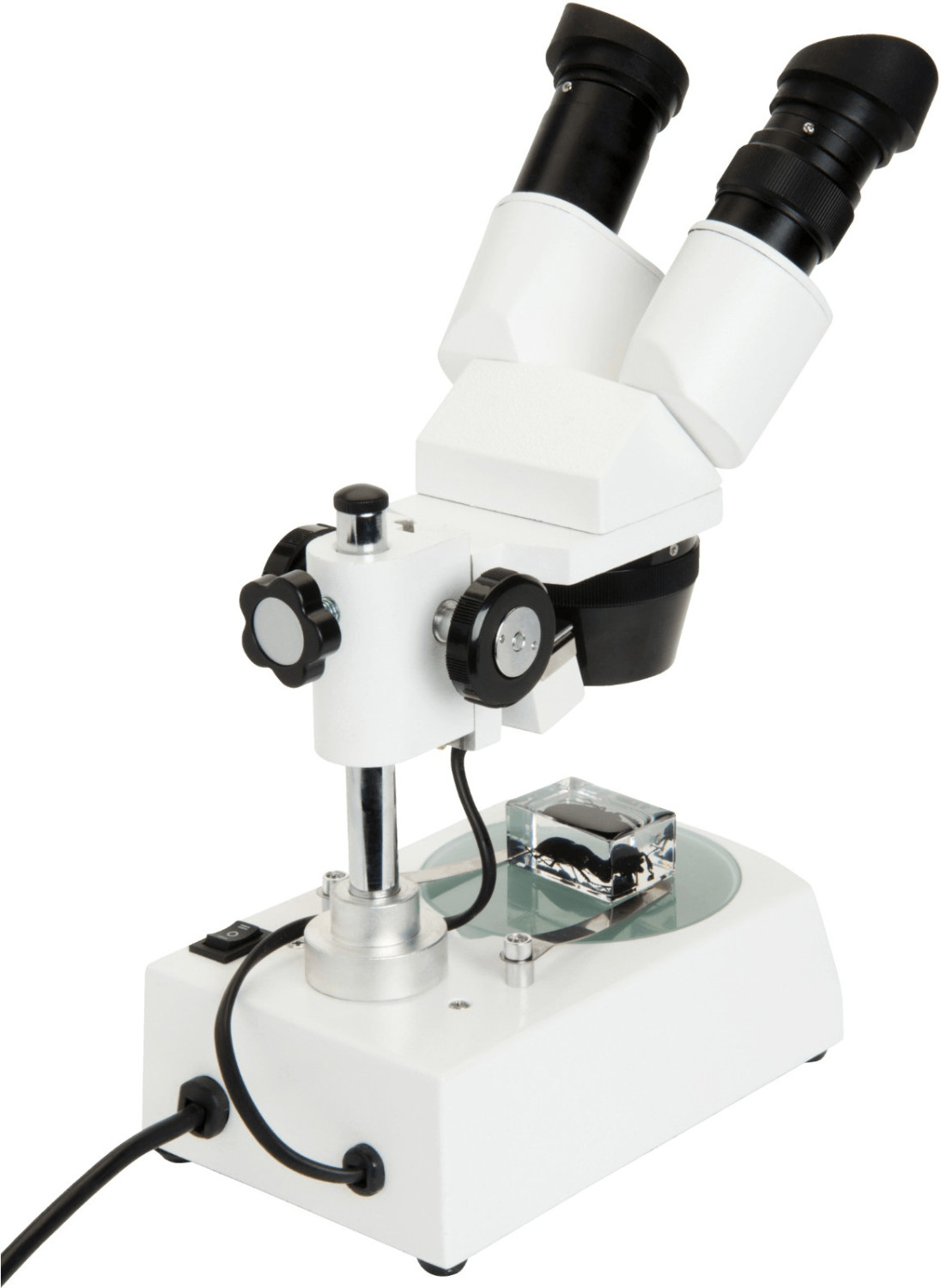 Celestron Labs S10-60 Stereolupe