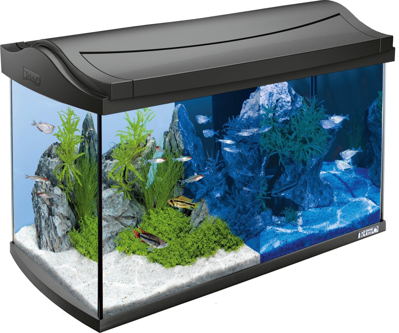 Tetra AquaArt LED Aquarium-Komplettset 60 L ant...