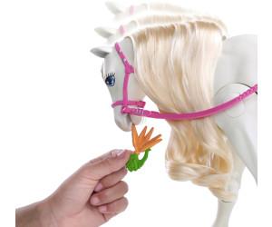 Barbie cheval de r ve frv36 au meilleur prix sur - Barbie et son cheval ...