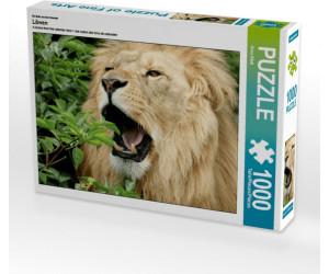 Calvendo Löwen 1000 Teile Lege-Größe 64 x 48 cm Foto-Puzzle Bild von Klatt Arno