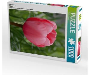 Calvendo Tulpen 1000 Teile Lege-Größe 48 x 64 cm Foto-Puzzle Bild von CALVENDO