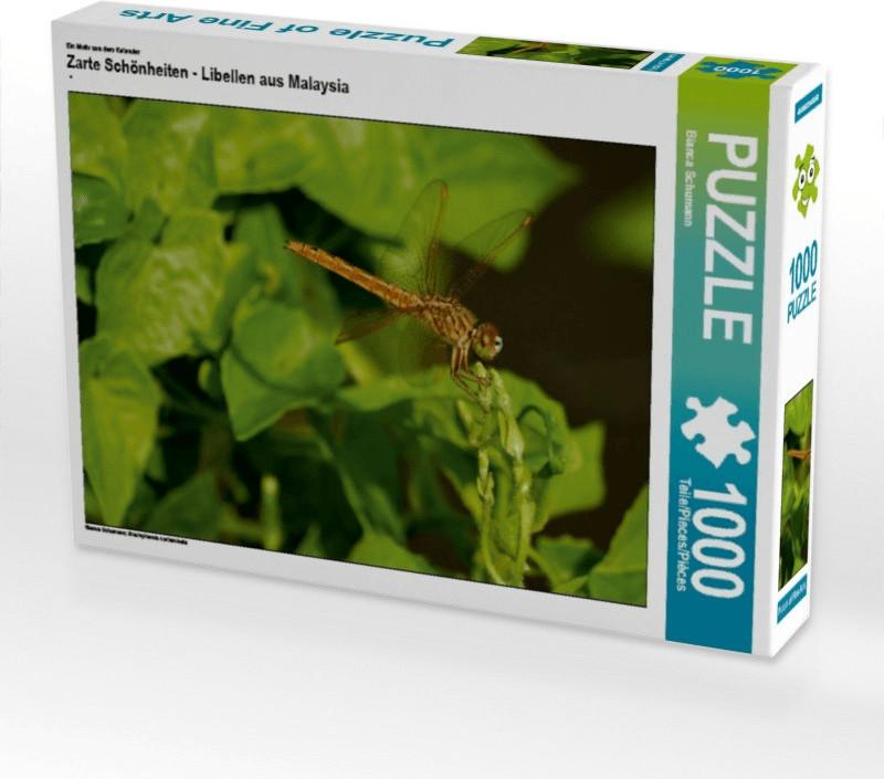 Calvendo Zarte Schönheiten - Libellen aus Malay...