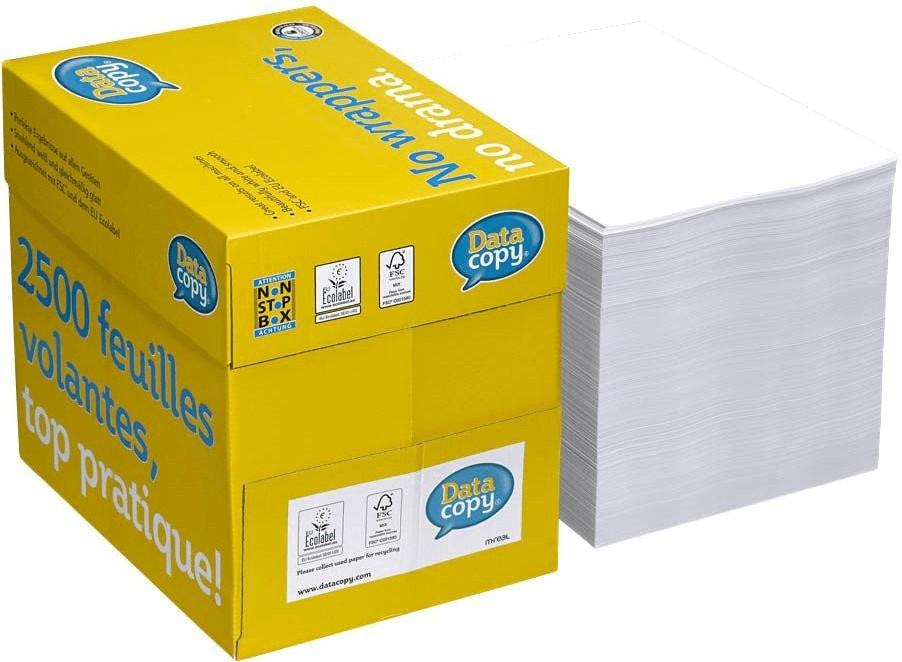 Image of DataCopy Everyday Printing (521830)