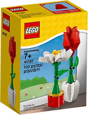 LEGO Fleurs décoratives (40187)