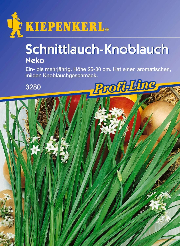 Kiepenkerl Schnitt-Knoblauch 'Neko'