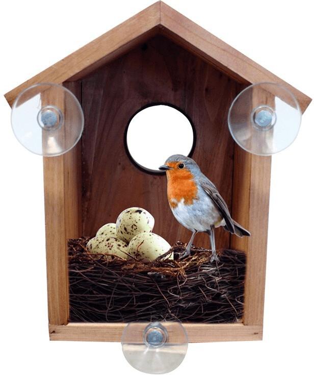 Bird Watcha Vogelhaus mit Beobachtungsfenster
