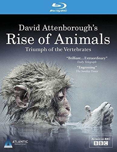 Image of David Attenborough's Rise of Animals: Triumph of the Vertebrates [Blu-ray]