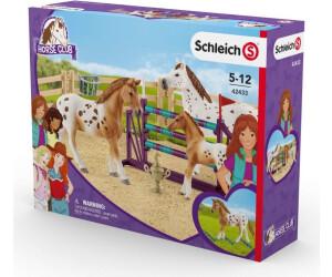Schleich Horse Club Lisas Turnier-Training Pferd Pferde Spiel Figur Spielfigur