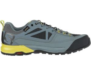 Chaussures et Sacs Salomon X Alp Spry GTX Chaussures de