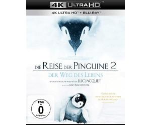 Die Reise Der Pinguine 2 - Der Weg Des Lebens (4K Ultra HD) [Blu-ray]