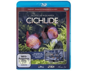 Tropische Aquarien - Cichlide [Blu-ray]