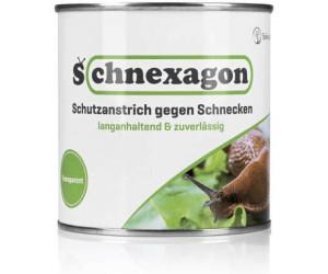 schnexagon