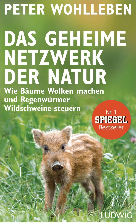 Image of Das geheime Netzwerk der Natur Wie Bäume Wolken machen und Regenwürmer Wildschweine steuern (Peter Wohlleben)