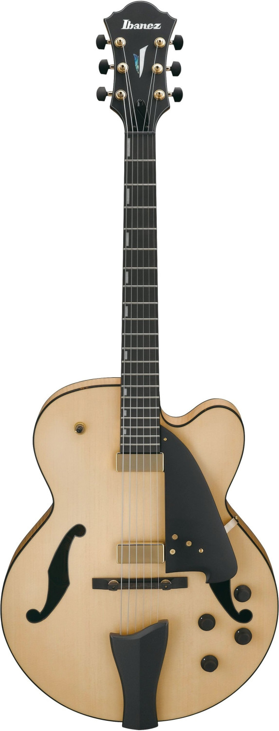 Image of Ibanez AFC95