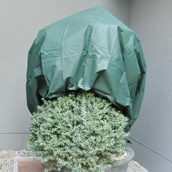 Noor Wintervlies PP 1,6 x 5 m grün