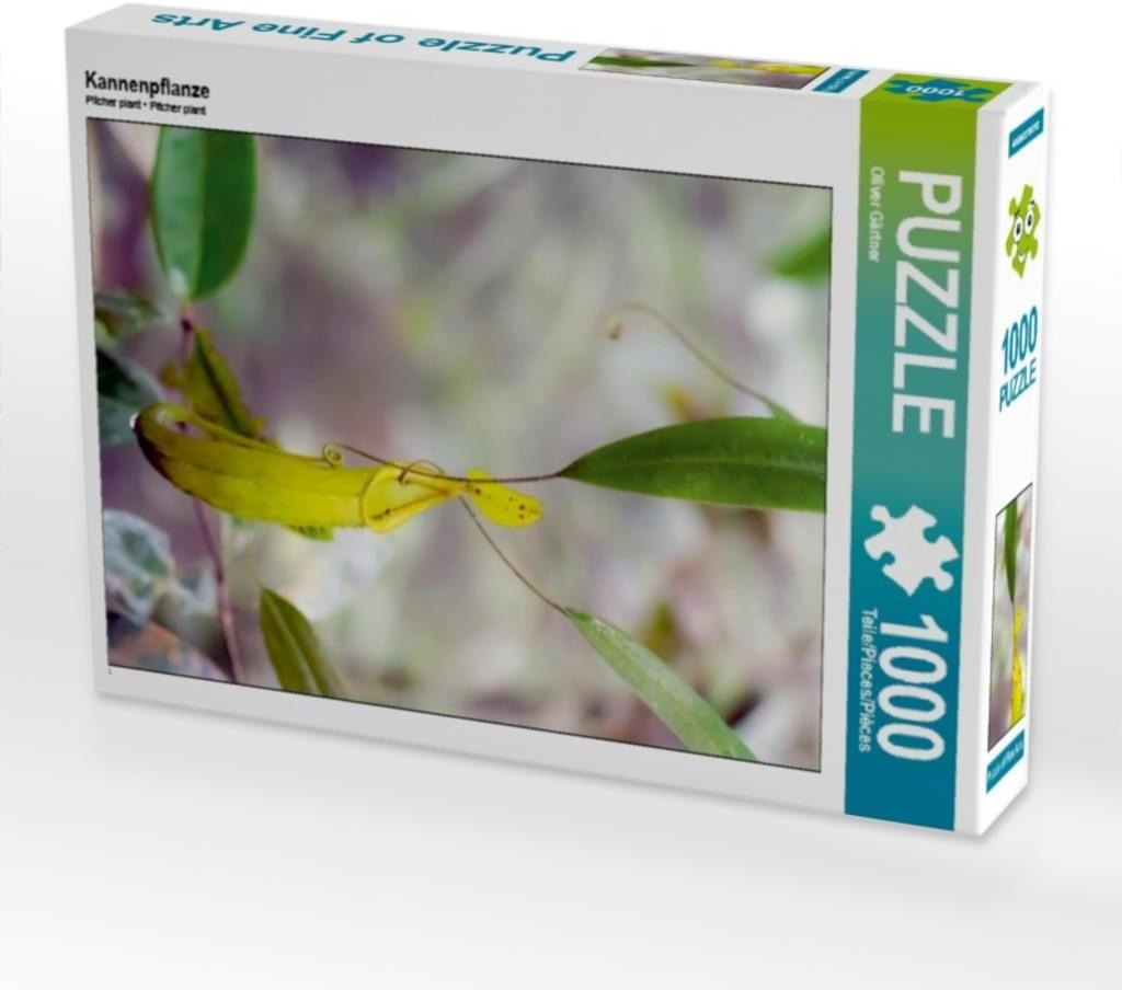 Calvendo Kannenpflanze (7442722)