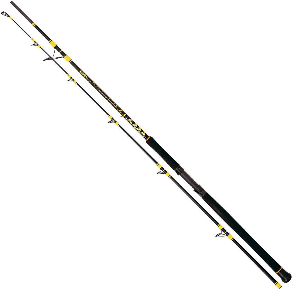 Zebco Black Cat Passion Pro DX 2,40m 600g