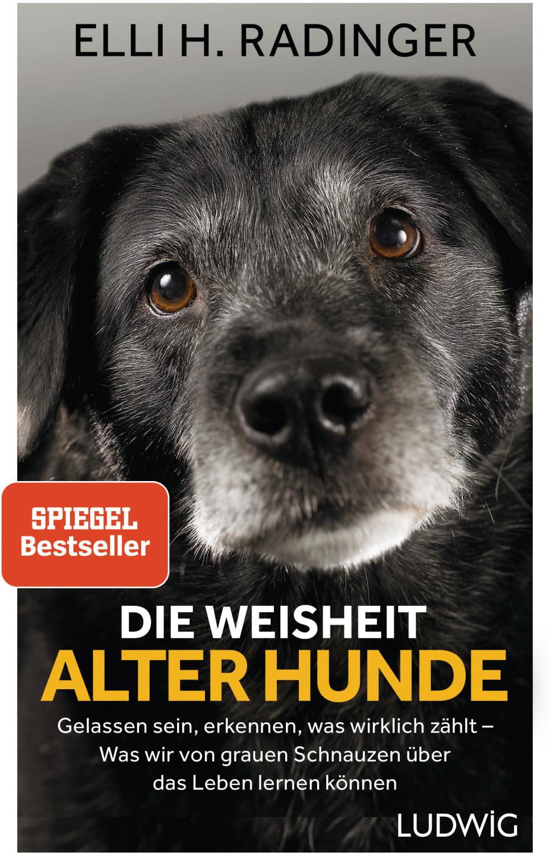 Image of Die Weisheit alter Hunde (Elli H. Radinger)