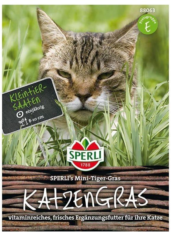 Sperli Mini-Tiger-Gras Katzengras