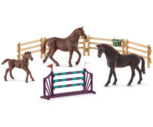 Geheimes Turnier Training am Caravan 72141 Horse Club