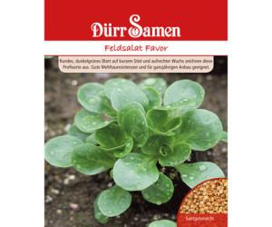 Dürr-Samen Feldsalat Favor