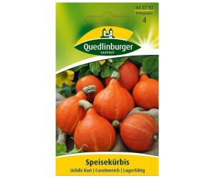 Quedlinburger Saatgut Quedlinburger Kürbis Hokkaido