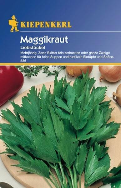 Kiepenkerl Maggikraut 1 Pkg