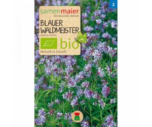 Samen Maier Bio Blauer Waldmeister 1 Pkg