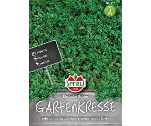 Sperli Gartenkresse Einfache Grüne 1 Pkg