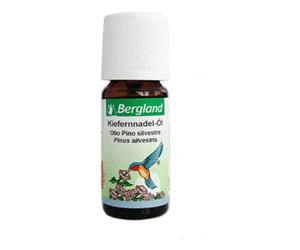 Bergland Kiefernadel Öl (10 ml)