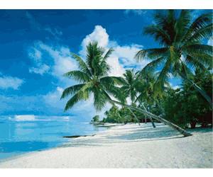 Ravensburger Mari del sud, Bora Bora a € 9,90 | Miglior prezzo su idealo